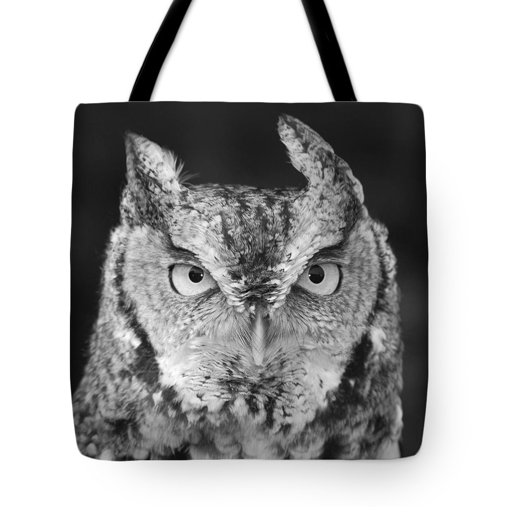 Black And White Tote Bag featuring the photograph Intense Stare by Richard Bryce and Family