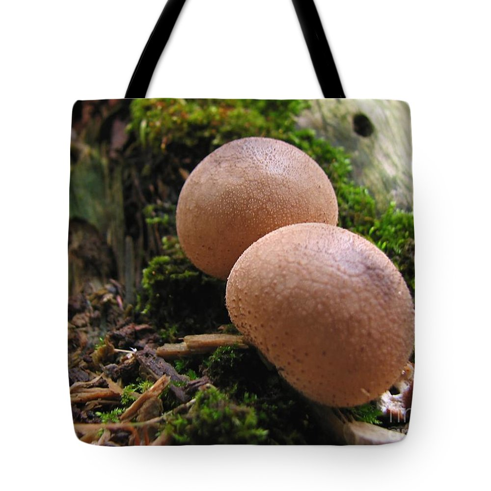 Macro Tote Bag featuring the photograph Interesting Pair by Todd Blanchard