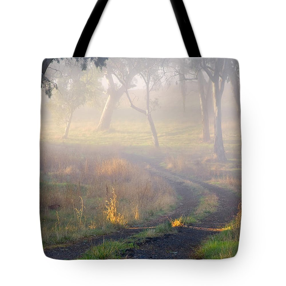 Mist Tote Bag featuring the photograph Into The Mist by Mike Dawson