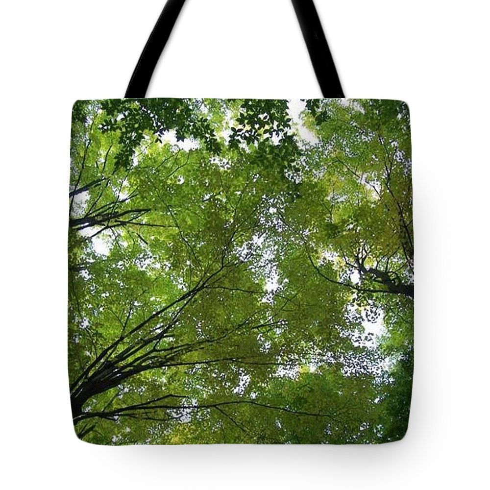 Photography Tote Bag featuring the photograph Into The Trees by Michael TMAD Finney