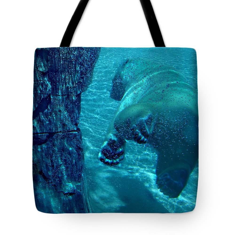 Tote Bag featuring the photograph Into The Wild Blue by Steve Karol