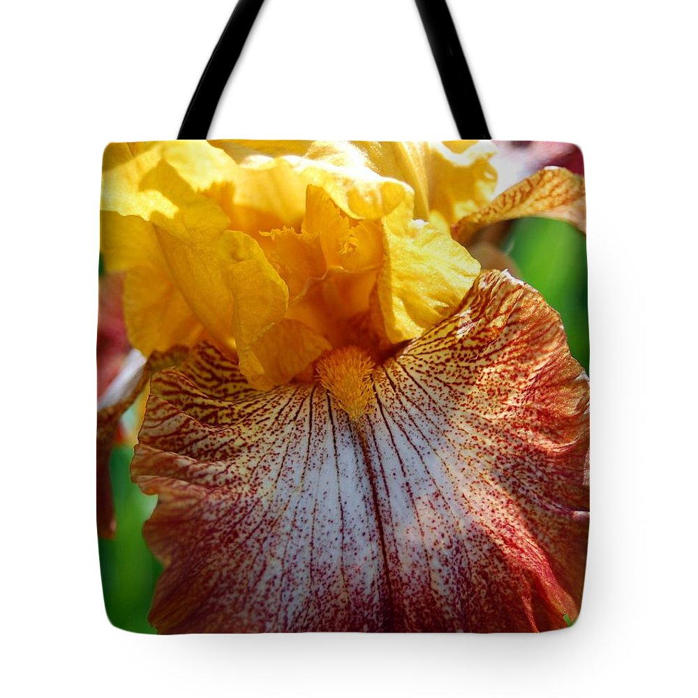 Iris Tote Bag featuring the photograph Iris 2 by Amy Fose