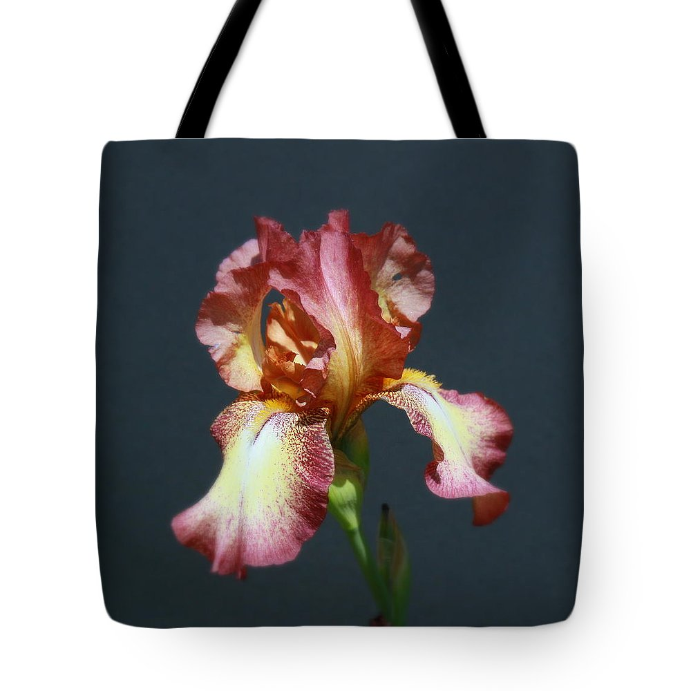 Iris Tote Bag featuring the photograph Iris 34 by Allen Beatty