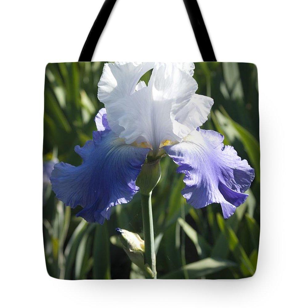 Iris Tote Bag featuring the photograph Iris 4 by Sara Stevenson