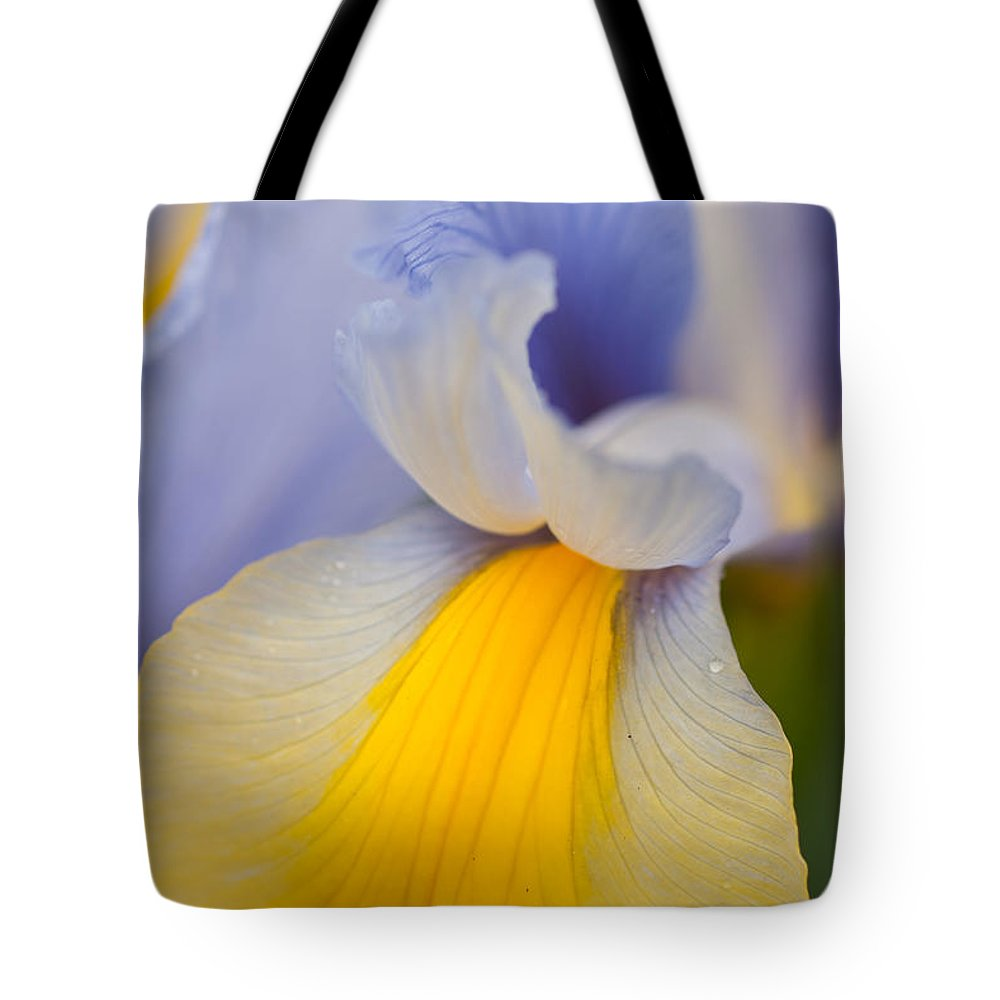 Abstracts Tote Bag featuring the photograph Iris 8 by Jill Greenaway