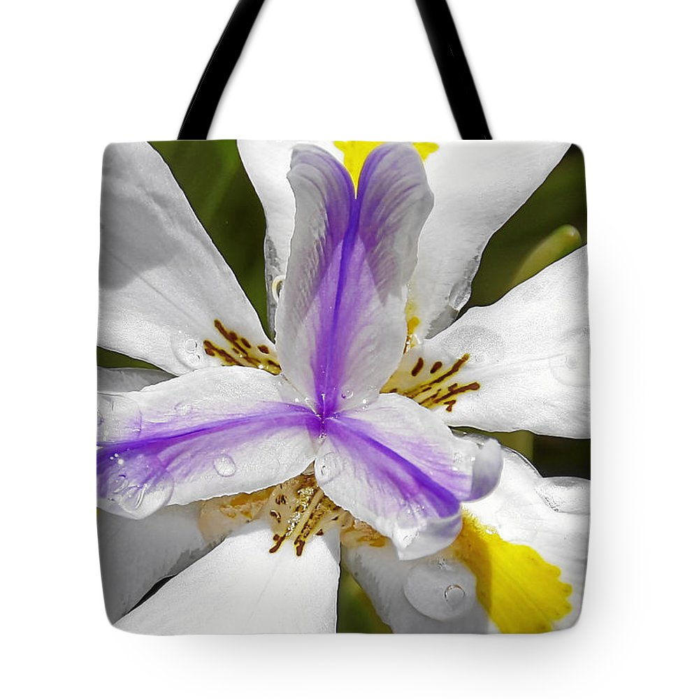 Flower Tote Bag featuring the photograph Iris An Explosion Of Friendly Colors by Christine Till