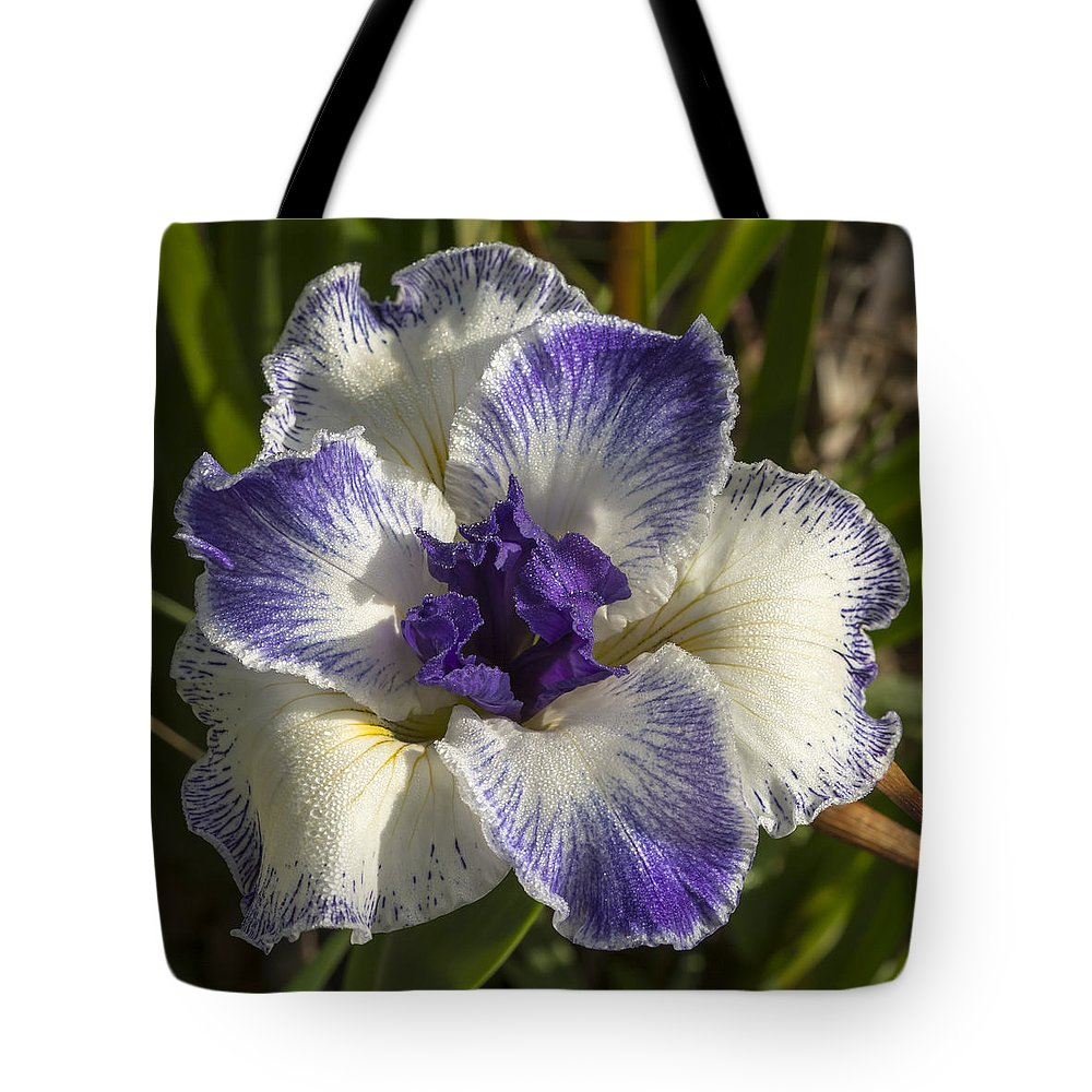 Flower Tote Bag featuring the photograph Iris by Bruce Frye