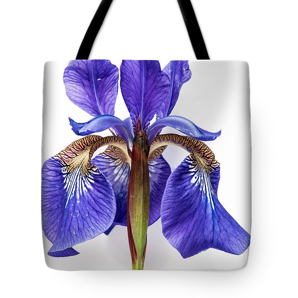 Iris Tote Bag featuring the photograph Iris by Jason Baldwin - Shared Perspectives Photography