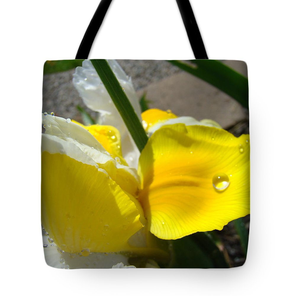 �irises Artwork� Tote Bag featuring the photograph Irises Artwork Iris Flowers Art Prints Flower Rain Drops Floral Botanical Art Baslee Troutman by Baslee Troutman