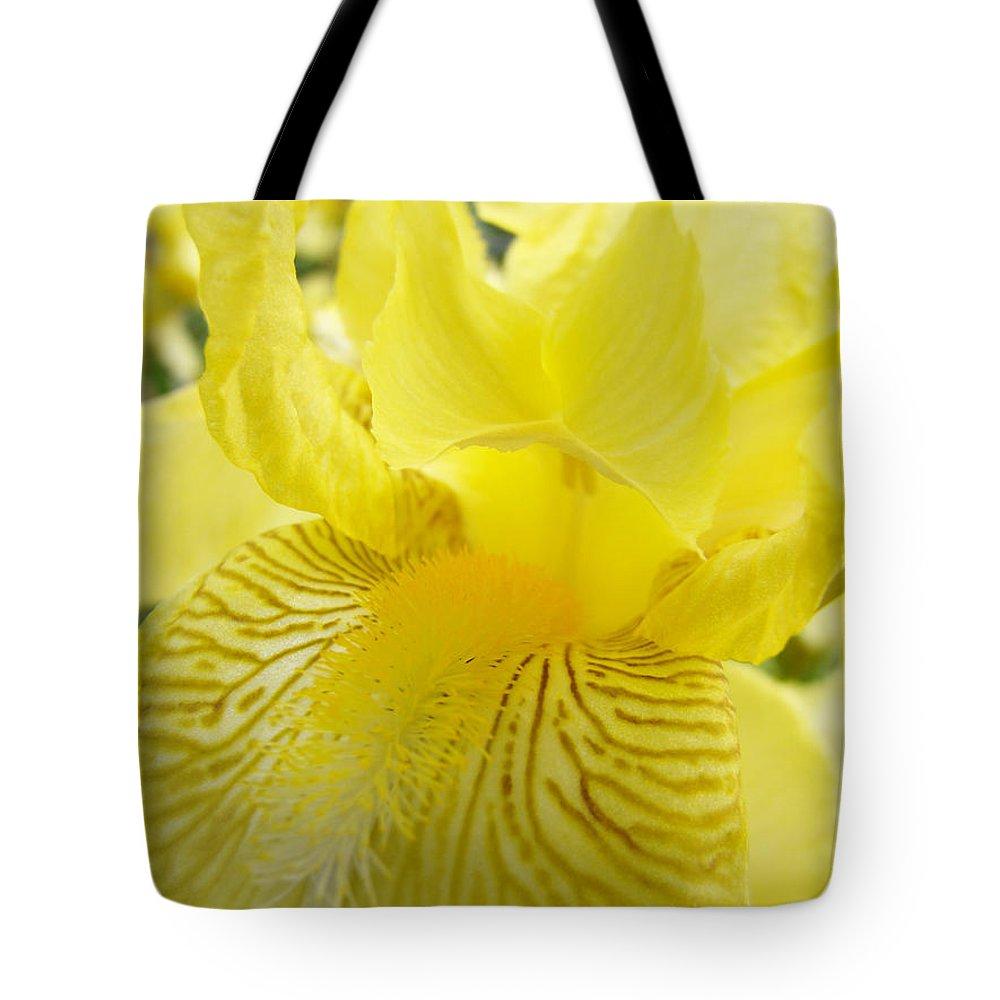 �irises Artwork� Tote Bag featuring the photograph Irises Yellow Brown Iris Flowers Irises Art Prints Baslee Troutman by Baslee Troutman