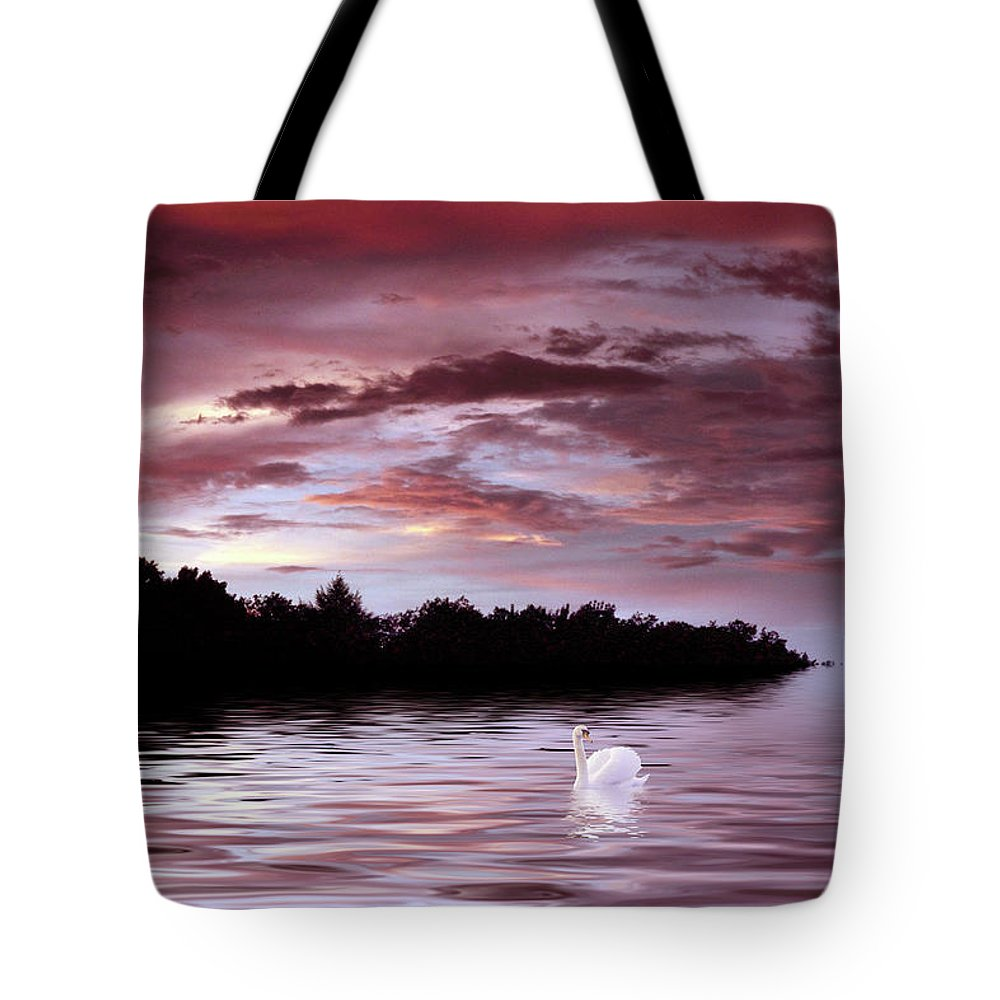 Swan Tote Bag featuring the photograph Sunset Swim by Jessica Jenney