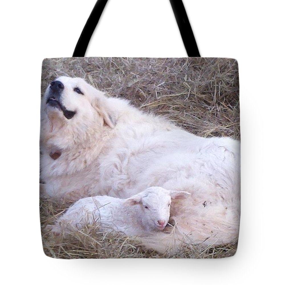 Great Pyrenees Dog Tote Bag featuring the photograph Isabel and Molly 2 by Ginger Concepcion