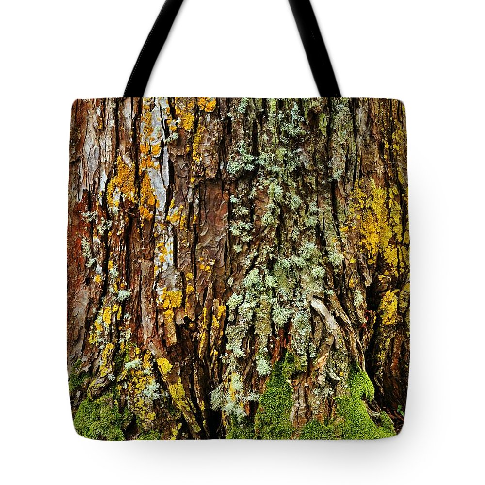 Tree Tote Bag featuring the photograph Island Moss by JAMART Photography