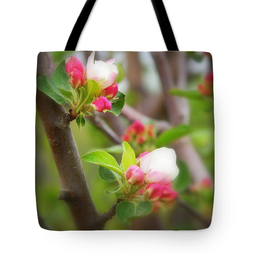It Is Springtime In The Annapolis Valley Tote Bag featuring the photograph It Is Spring Time In The Annapolis Valley by Karen Cook