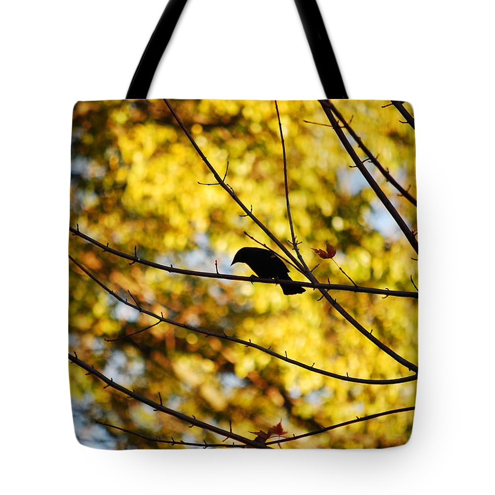 Bird Tote Bag featuring the photograph It's A Bird by Lori Tambakis
