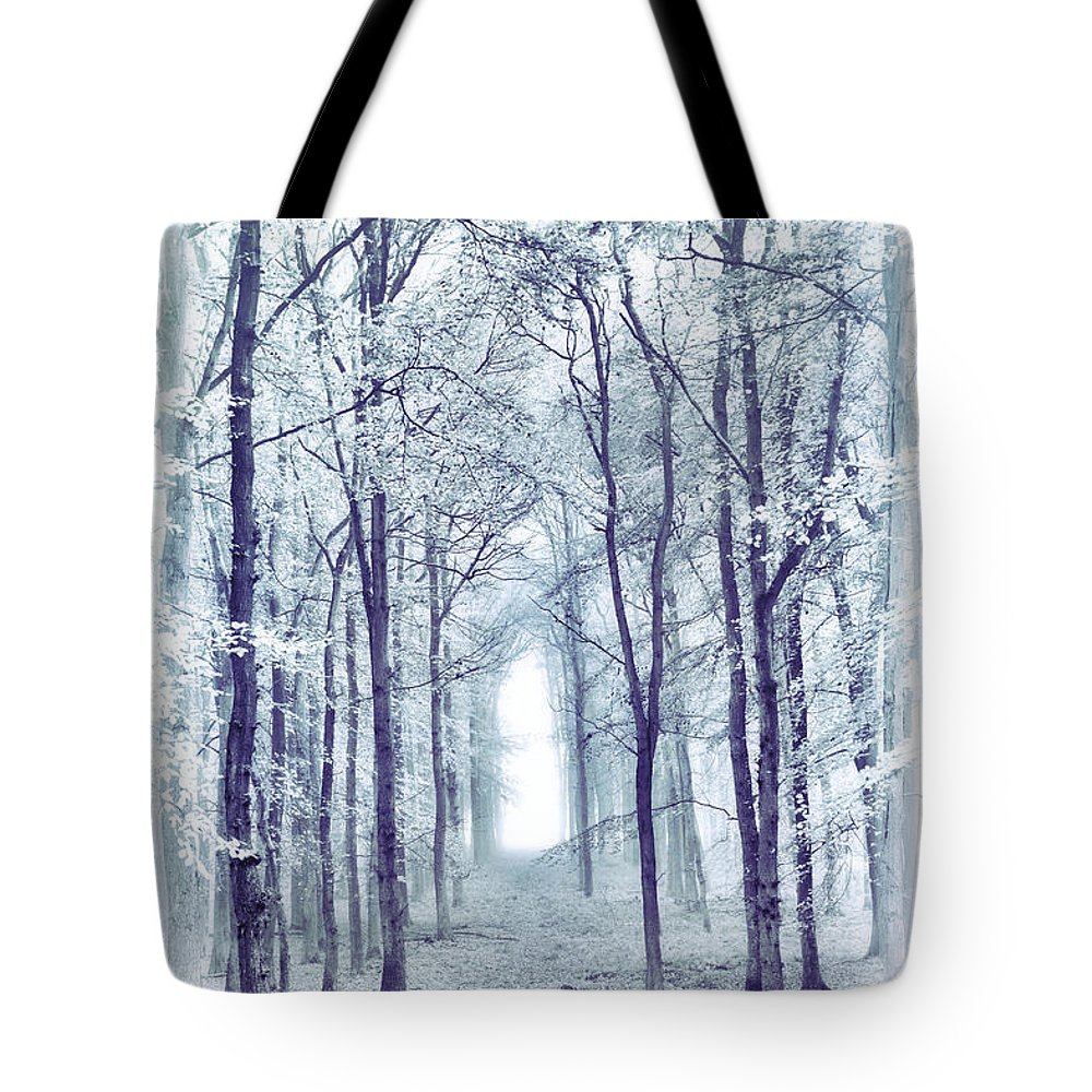 Beech Trees Tote Bag featuring the photograph Its In The Trees by Tim Gainey