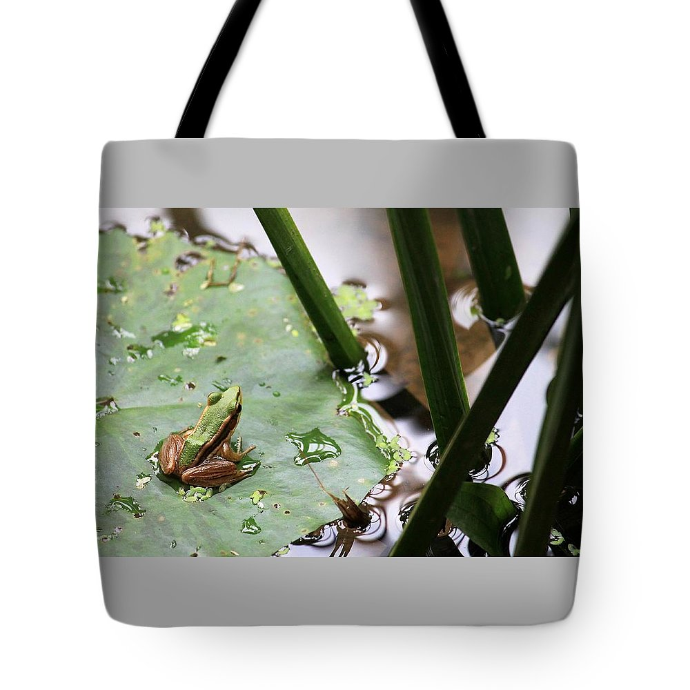 Tadpole Tote Bag featuring the photograph It's Not Easy Being Green by John Cumbow