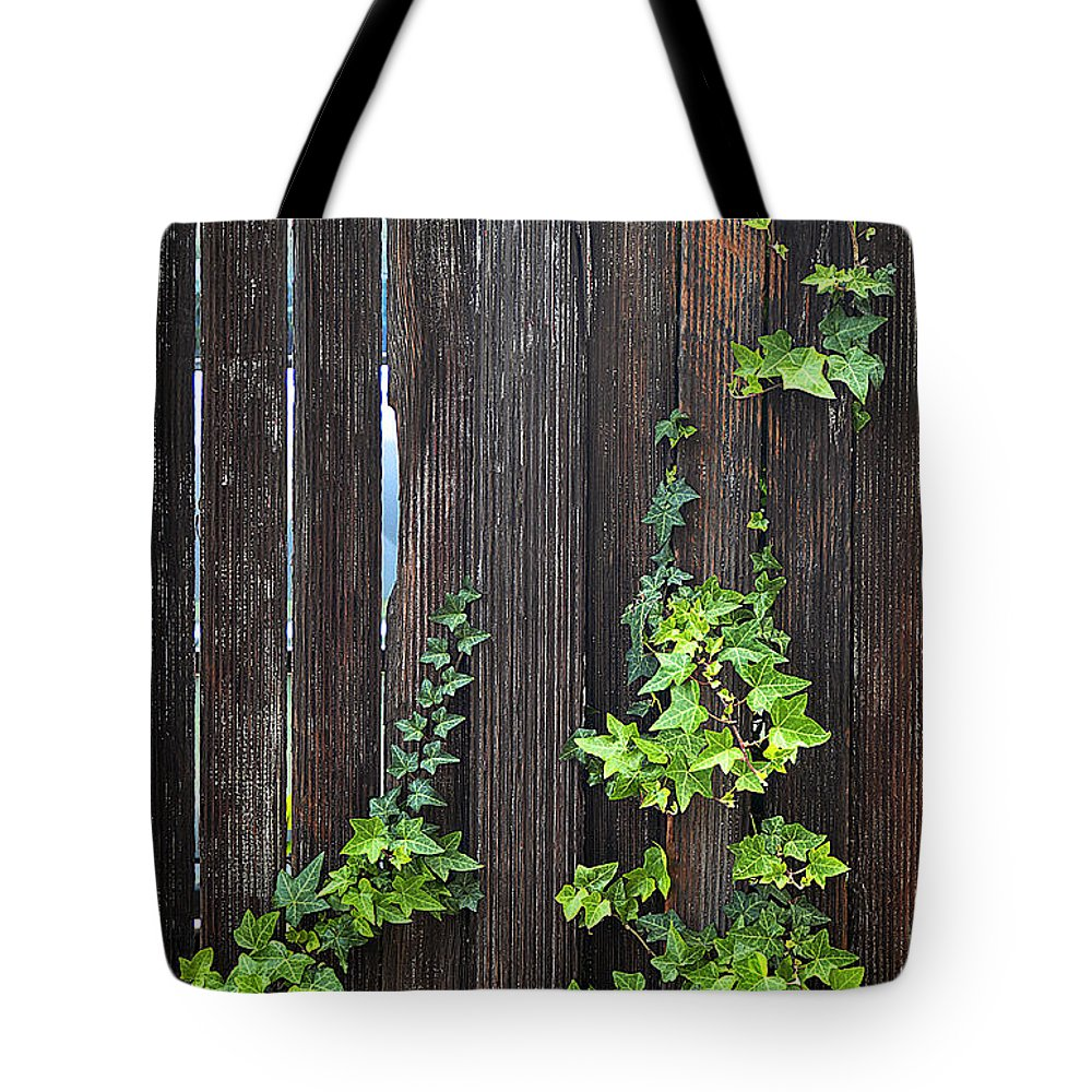 Clay Tote Bag featuring the photograph Ivy On Fence by Clayton Bruster