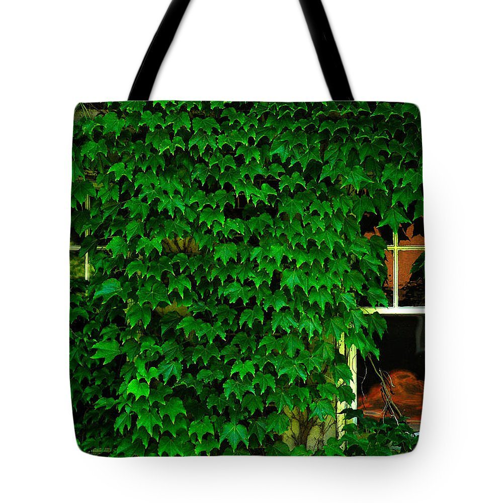 Ivy Tote Bag featuring the photograph Ivy Window by Harry Spitz