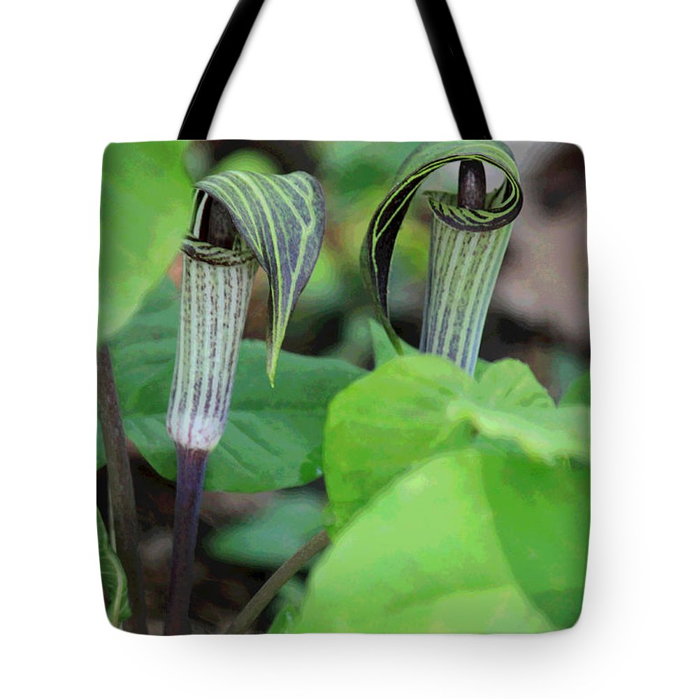 Jack In The Pulpit Tote Bag featuring the photograph Jack In The Pulpit Enhanced by Suzanne Gaff