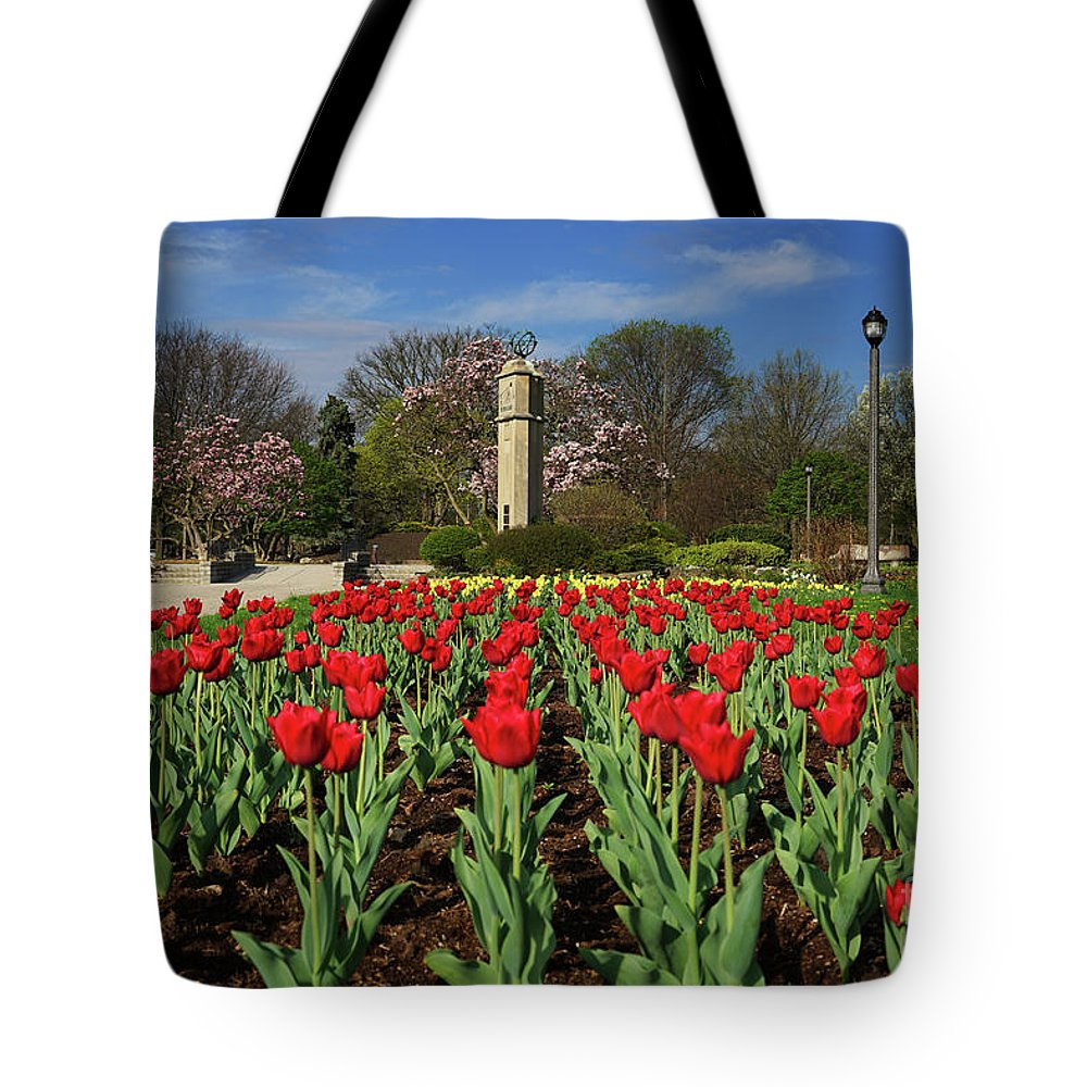 Jackson Park Spring Tulips Tote Bag featuring the photograph Jackson Park Spring Tulips 2 by Rachel Cohen