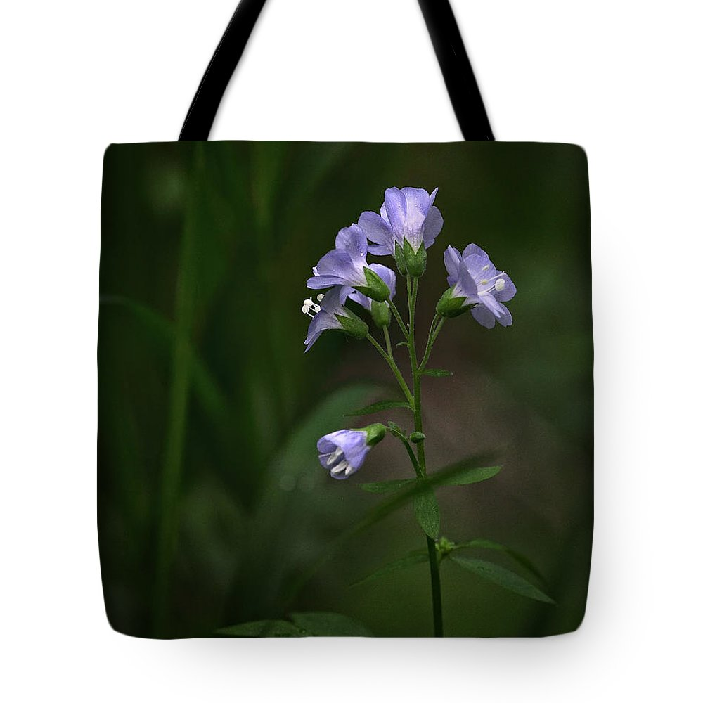 Jacobs Ladder Tote Bag featuring the photograph Jacob's Ladder Upper Buffalo Wilderness by Michael Dougherty