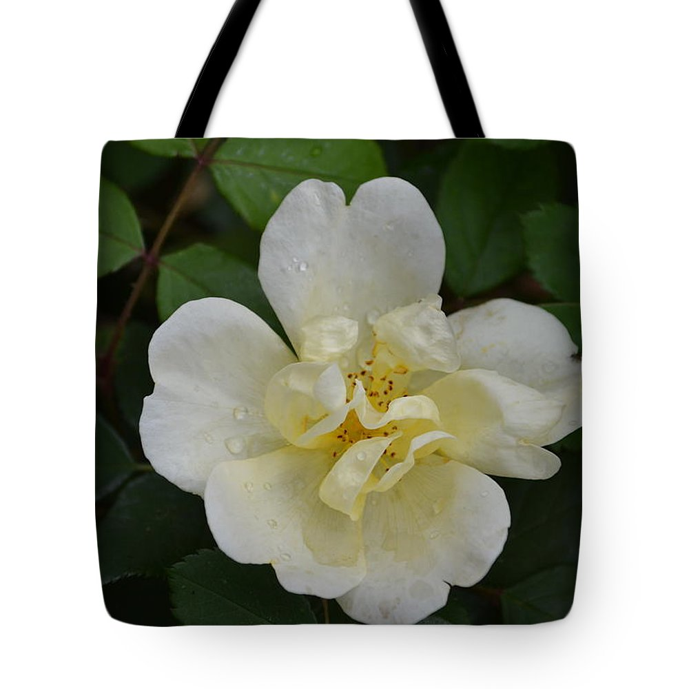 Roses Tote Bag featuring the digital art Jade And Ivory by Joe Bledsoe
