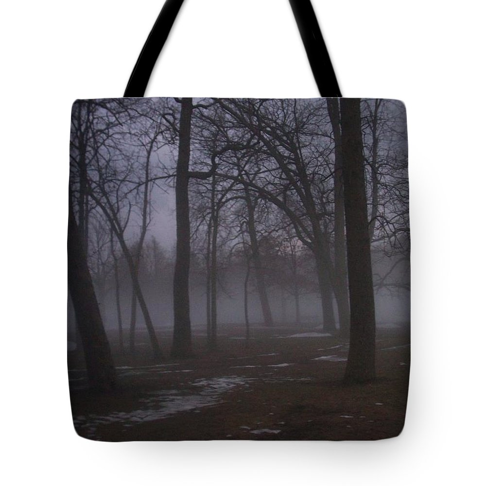 January Tote Bag featuring the photograph January Fog 2 by Anita Burgermeister