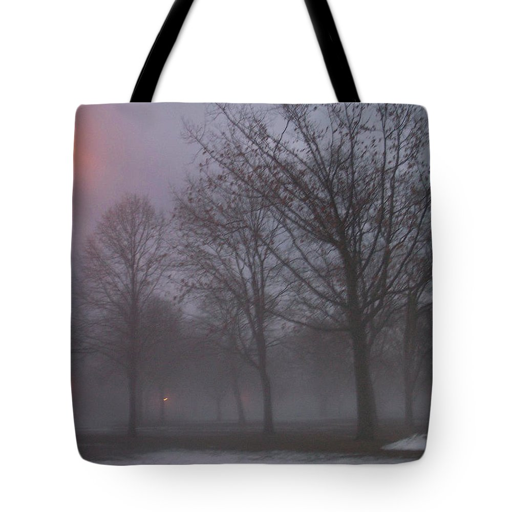 January Tote Bag featuring the photograph January Fog 3 by Anita Burgermeister