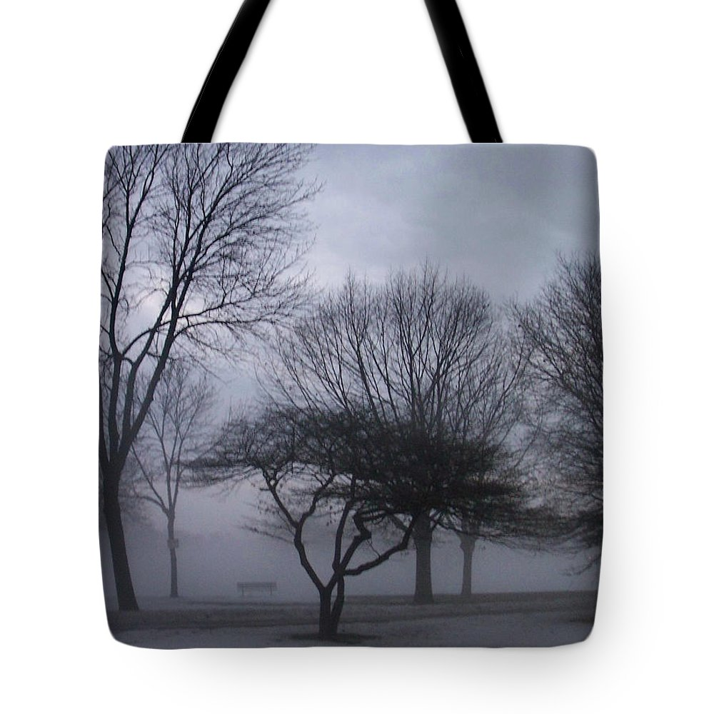 January Tote Bag featuring the photograph January Fog 6 by Anita Burgermeister