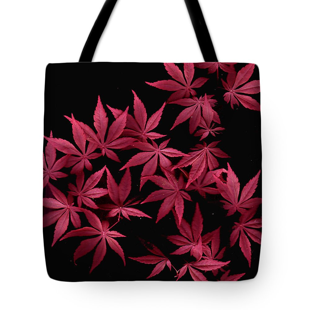 Japanese Maple Tote Bag featuring the photograph Japanese Maple Leaves by Wayne Potrafka