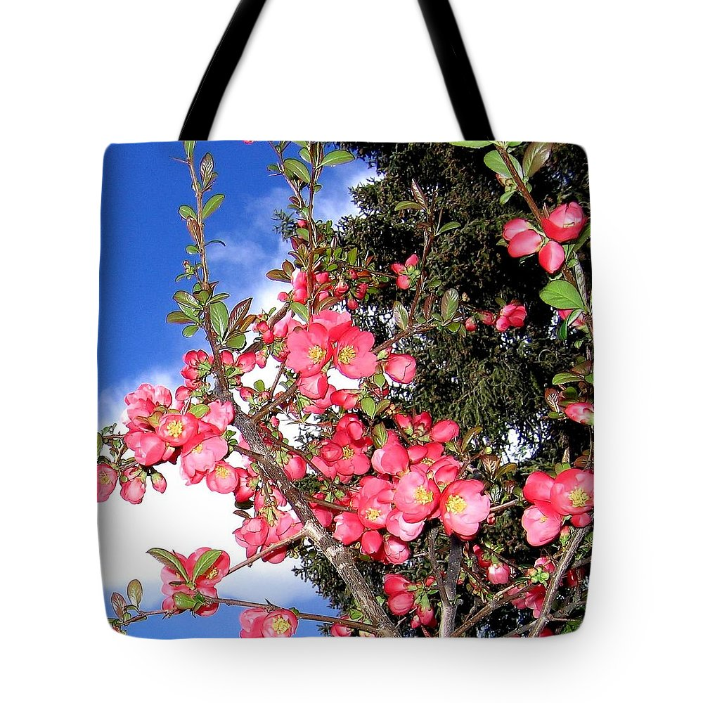 Japonica Tote Bag featuring the photograph Japonica by Will Borden