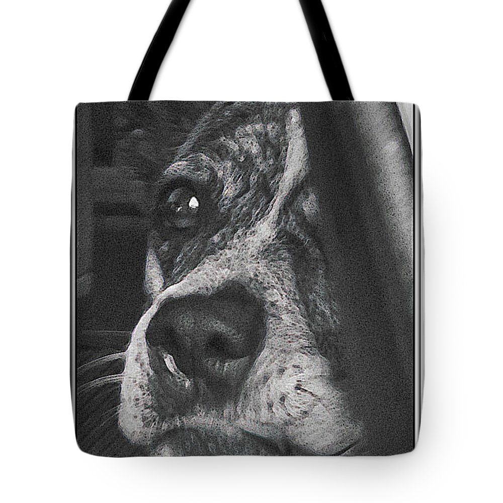 Dog Tote Bag featuring the photograph Jazz by Karen W Meyer