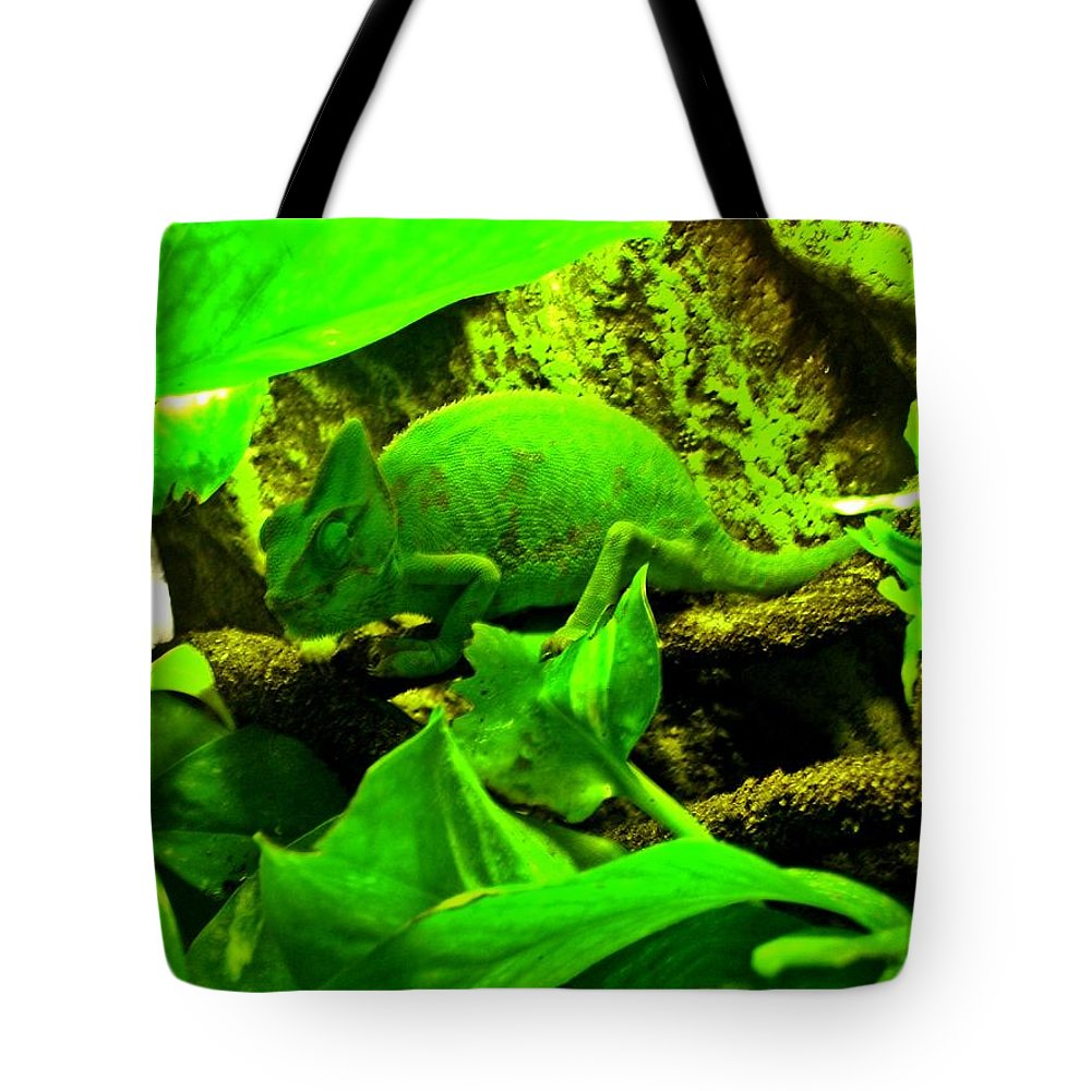 #chameleon #animals #habitat #green #sleep Tote Bag featuring the photograph Jeanette by Rene GrayMitchell