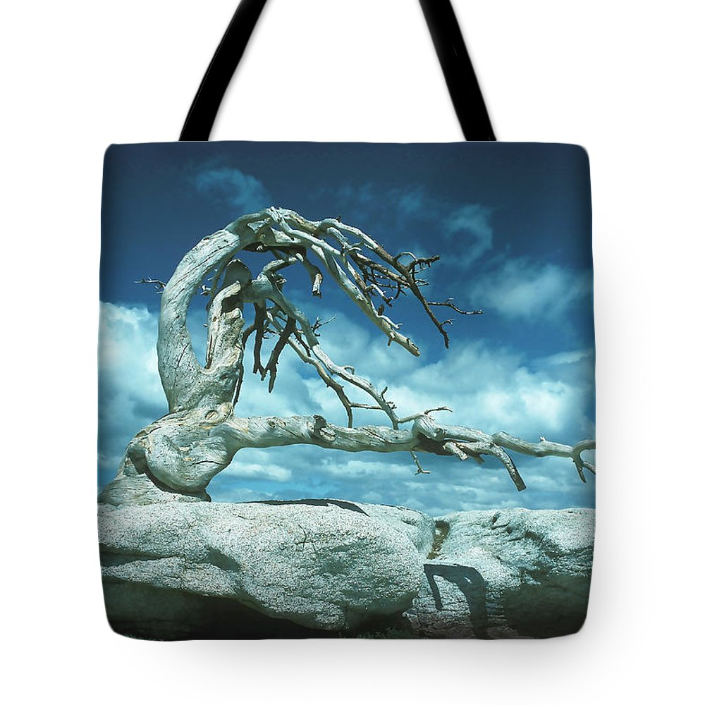 Jeffery Tote Bag featuring the photograph Jeffrey Pine Sentinel Dome by Joe Palermo