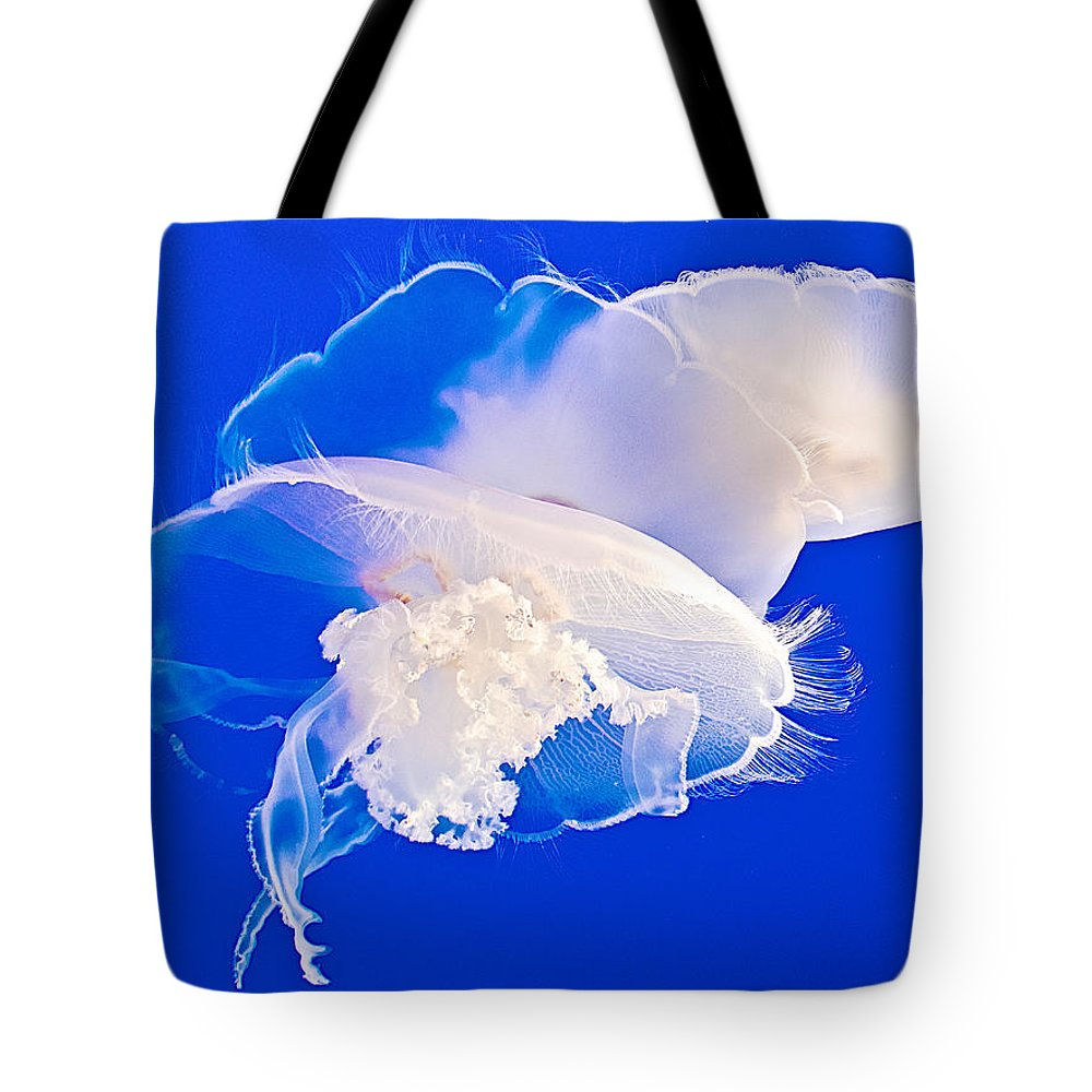 Jellies In Jellyfish Tank In Monterey Aquarium Tote Bag featuring the photograph Jellies In Jellyfish Tank In Monterey Aquarium-california by Ruth Hager