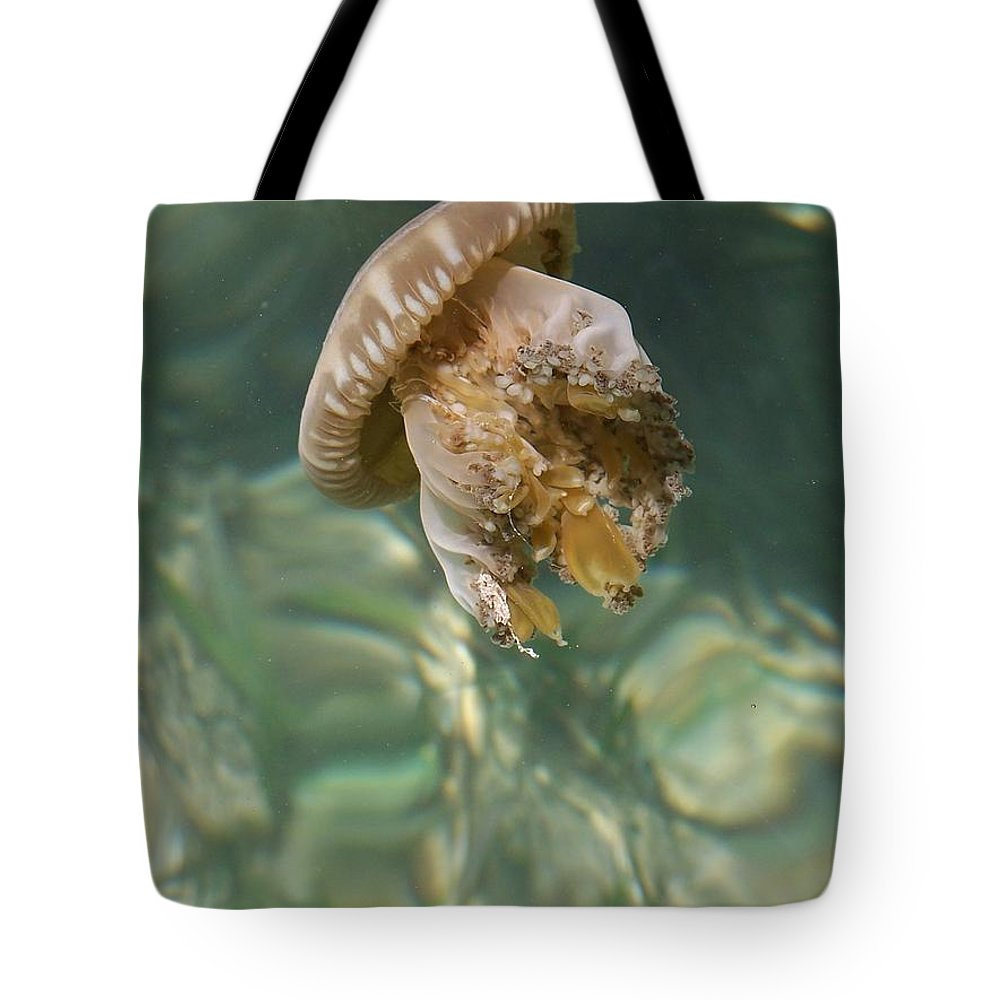 Jelly Tote Bag featuring the photograph Jelly Belly by Gale Cochran-Smith