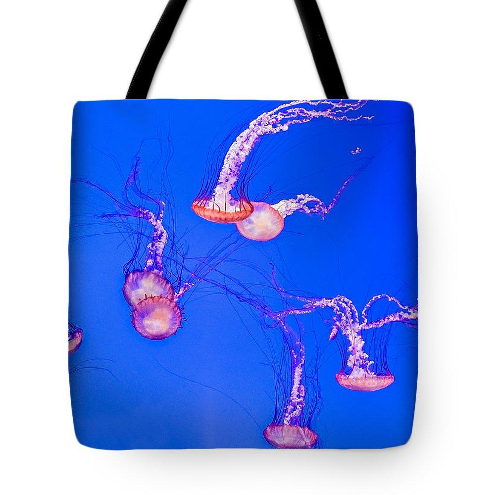 Steve Harrington Tote Bag featuring the photograph Jellyfish World by Steve Harrington