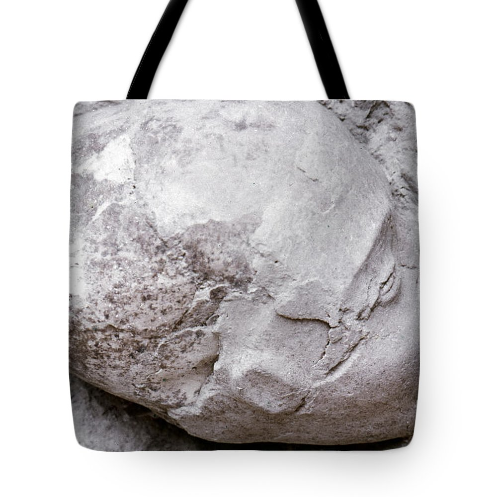 7th Millennium B.c Tote Bag featuring the photograph Jericho: Human Skull by Granger