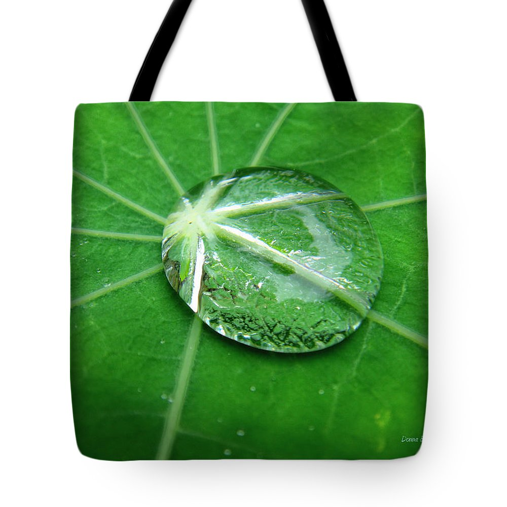 Water Tote Bag featuring the photograph Jewel Of The Nile by Donna Blackhall