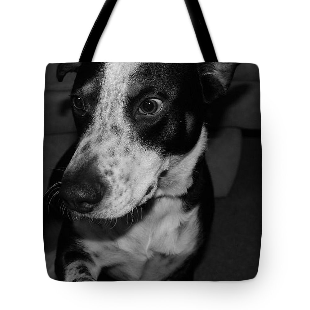Black And White Tote Bag featuring the photograph Jimmy by Rob Hans