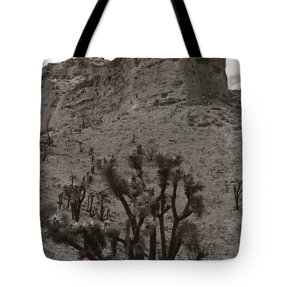 Tote Bag featuring the photograph Joshua Hillside by Heather Kirk