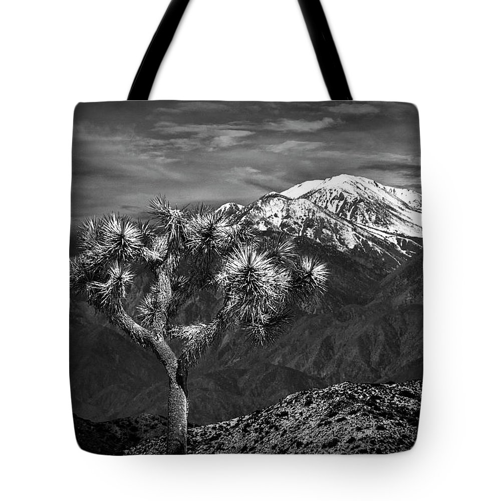 California Tote Bag featuring the photograph Joshua Tree At Keys View In Black And White by Randall Nyhof
