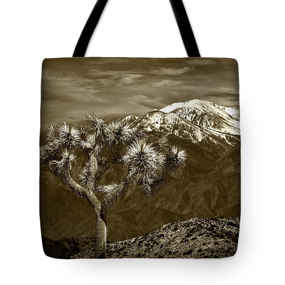 California Tote Bag featuring the photograph Joshua Tree At Keys View In Sepia Tone by Randall Nyhof