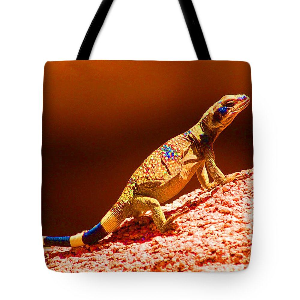 Lizard Tote Bag featuring the photograph Joshua Tree Lizard by John Malmquist