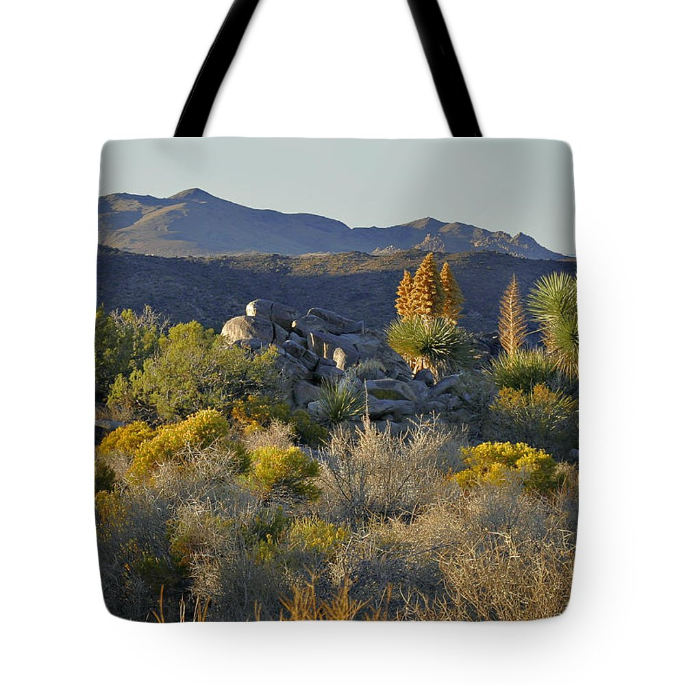 Sunset Tote Bag featuring the photograph Joshua Tree National Park in California by Christine Till
