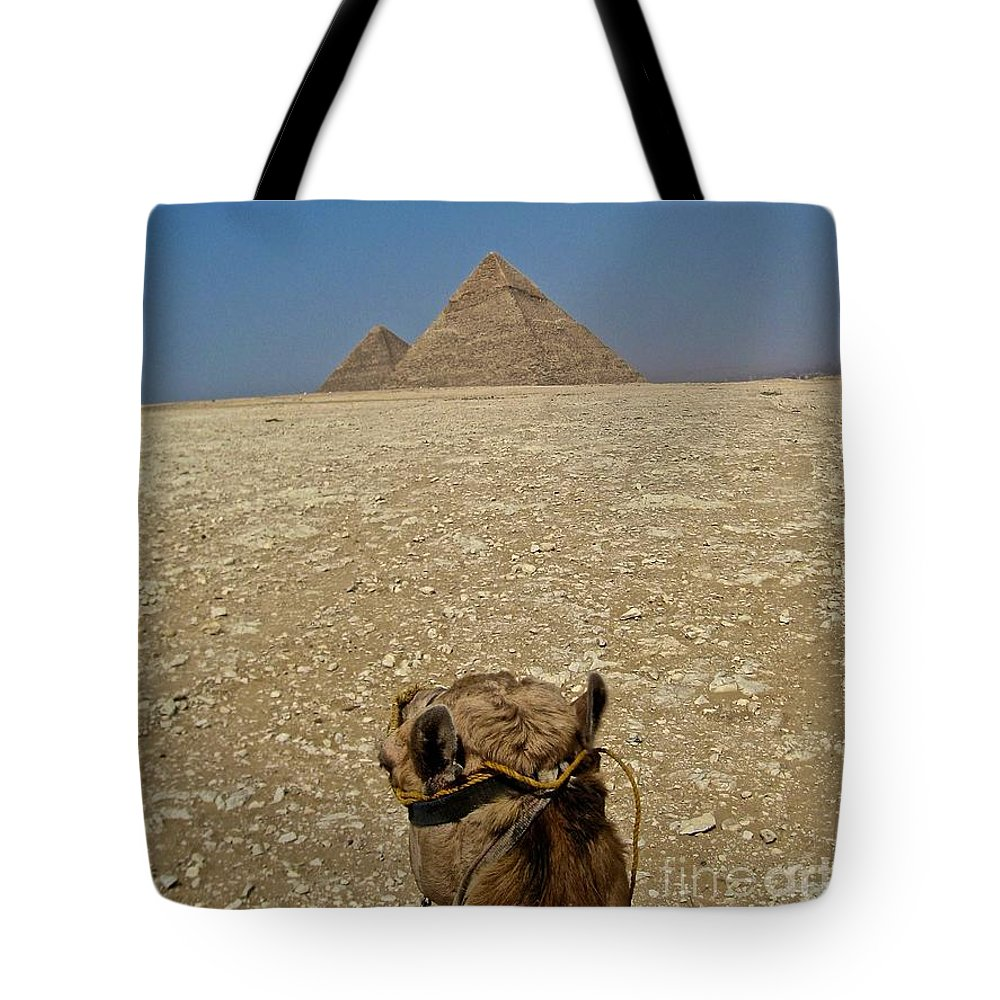 Egypt Tote Bag featuring the photograph Journey Into The Desert by Roam Images