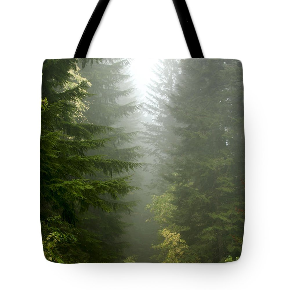 Forest Tote Bag featuring the photograph Journey Through The Fog by Idaho Scenic Images Linda Lantzy