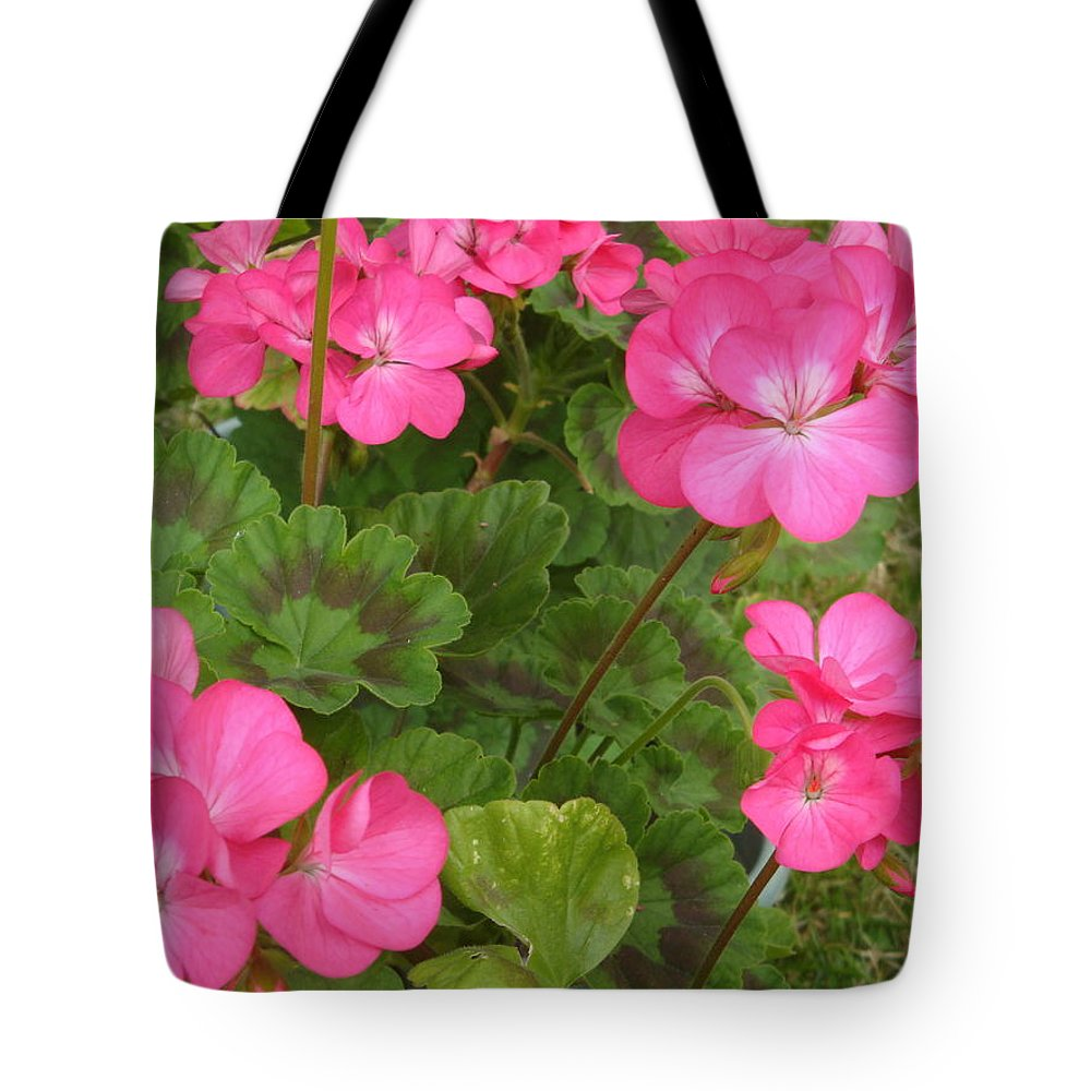 Geranium Tote Bag featuring the photograph Joyful Geranium by Cathy MONNIER