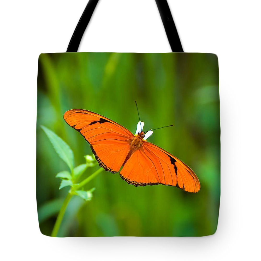 Butterfly Tote Bag featuring the photograph Julia Butterfly by Rich Leighton